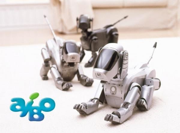 робот собака Aibo